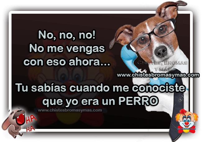 Chistes... 01-png.388348