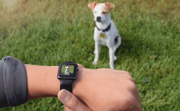 Las cámaras llegan al Apple Watch as21-postimg-org_6m34rtnx3_image-png.133904